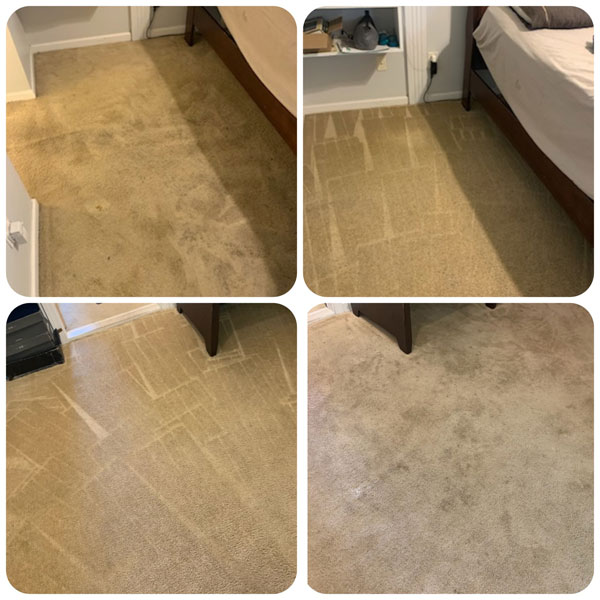 Carpet Cleaning in Charlotte, NC